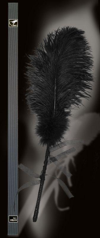 Amor's FLIRT černé